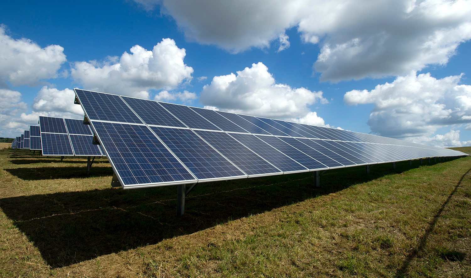 Solar panels for processing plant